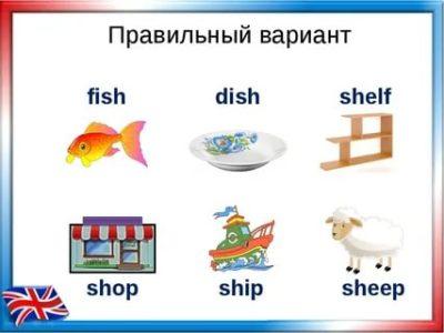 как переводится слово shelves