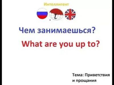 как по английски чем занимаешься