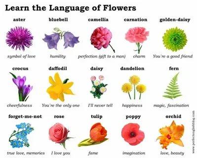 переведите на английский язык какой прекрасный цветок