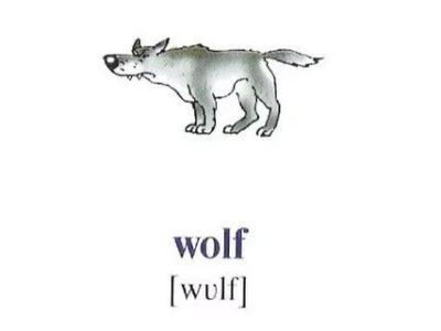 как на английском будет волк