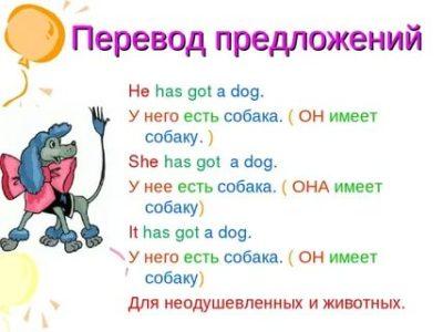 как переводится слово got