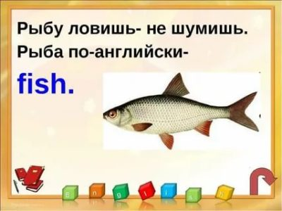 как по английски рыба