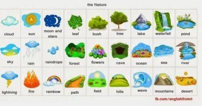 как по английски природа
