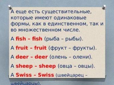 как по английски рыба во множественном числе