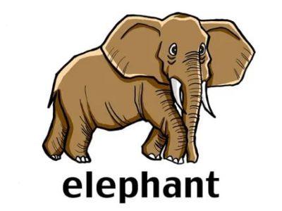 как пишется слон по английски