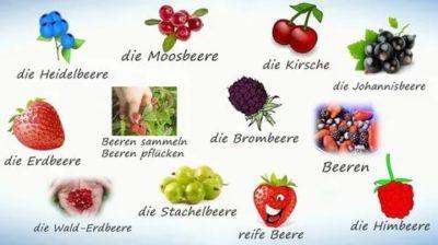 как по английски ягоды