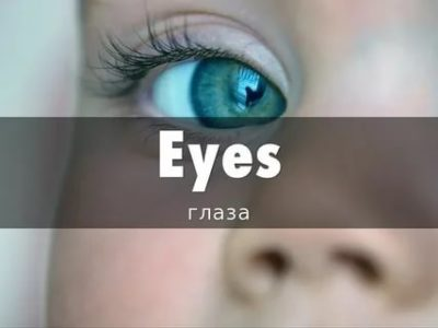 как будет на английском глаза
