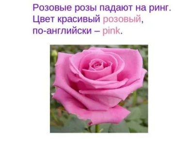 как по английски розовый