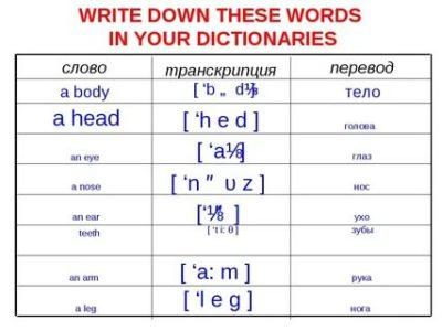 как произносится слово your