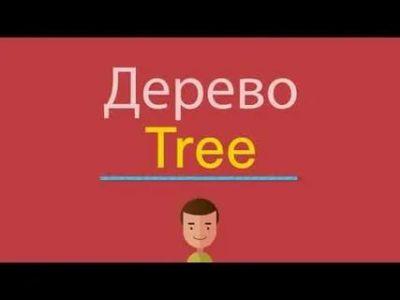 как читается слово tree
