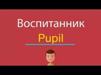 как переводится слово pupil