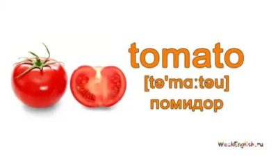 как по английски помидор