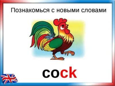 Cock & Cum Frenzy