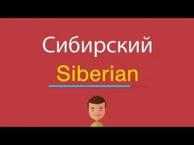 сибирь по английски как пишется